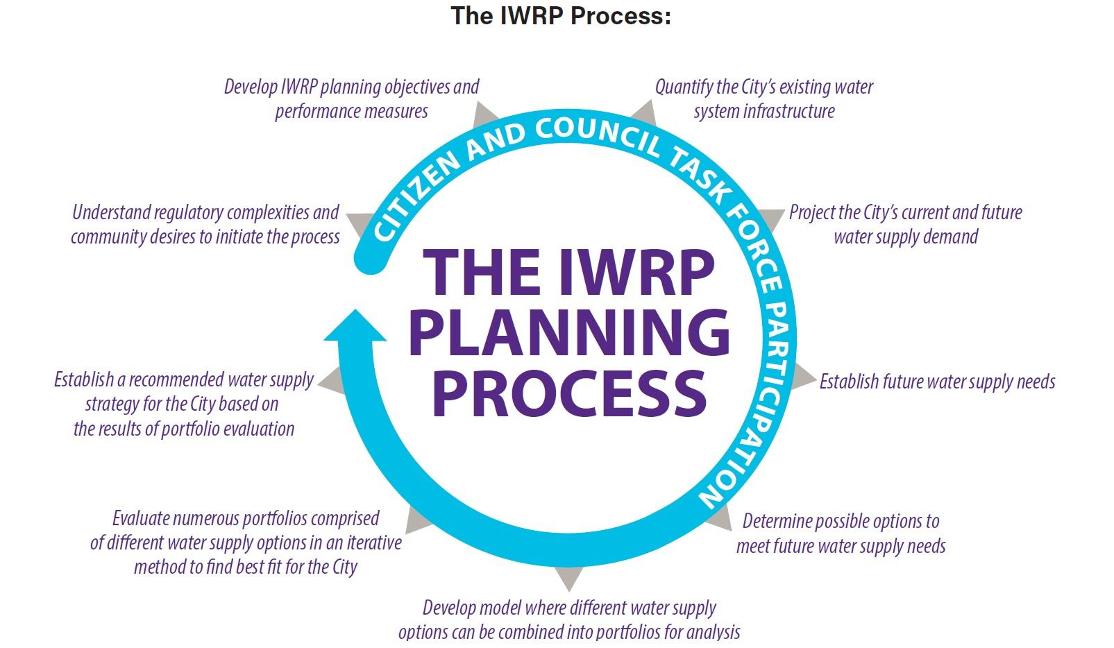 The IWRP Process