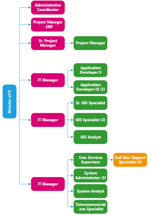 IT org chart for website