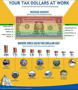 Proposed Budget Infographic Opens in new window